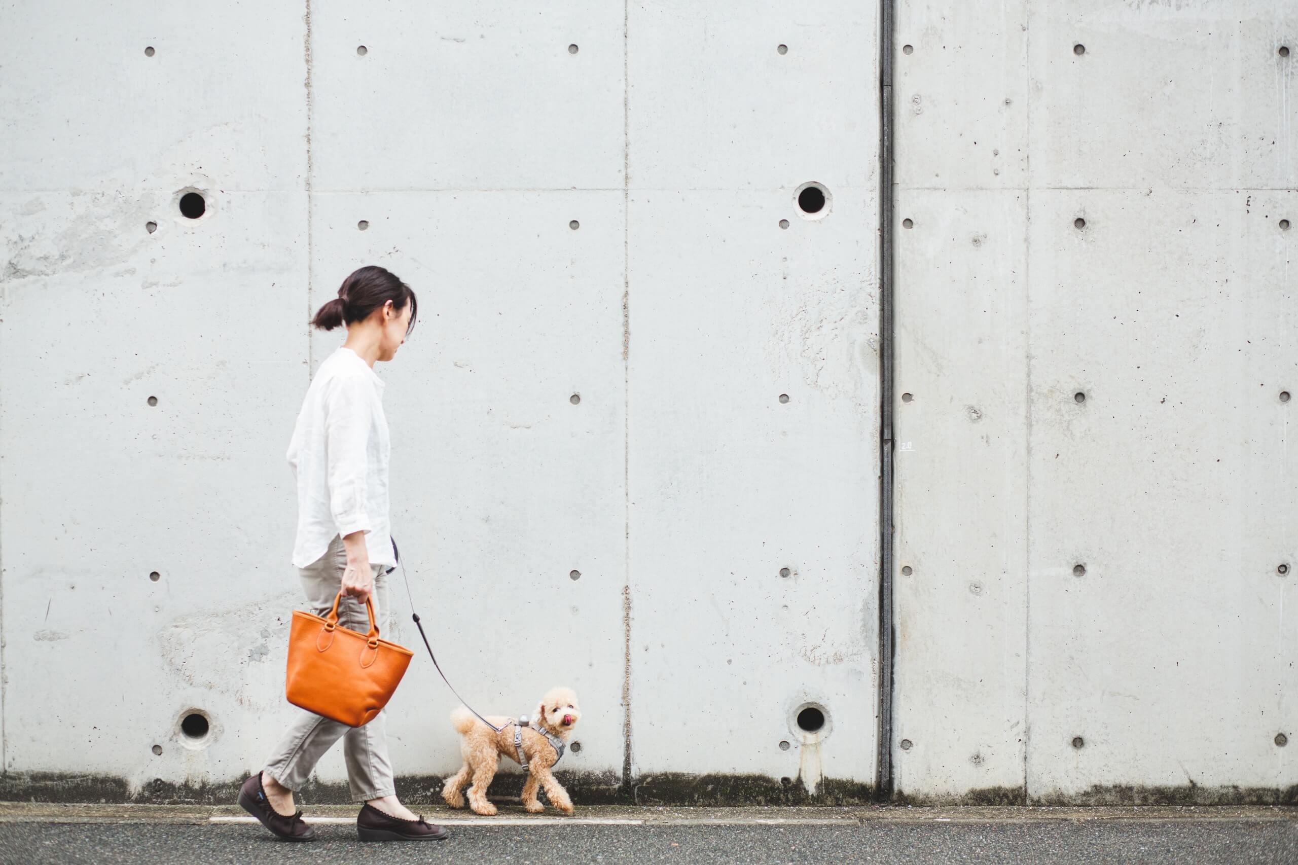 ラウンドミニトートバッグと犬の散歩